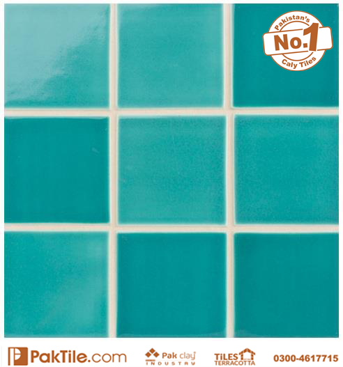 1 Pak Clay Swimming Pool Tiles Texture in Pakistan