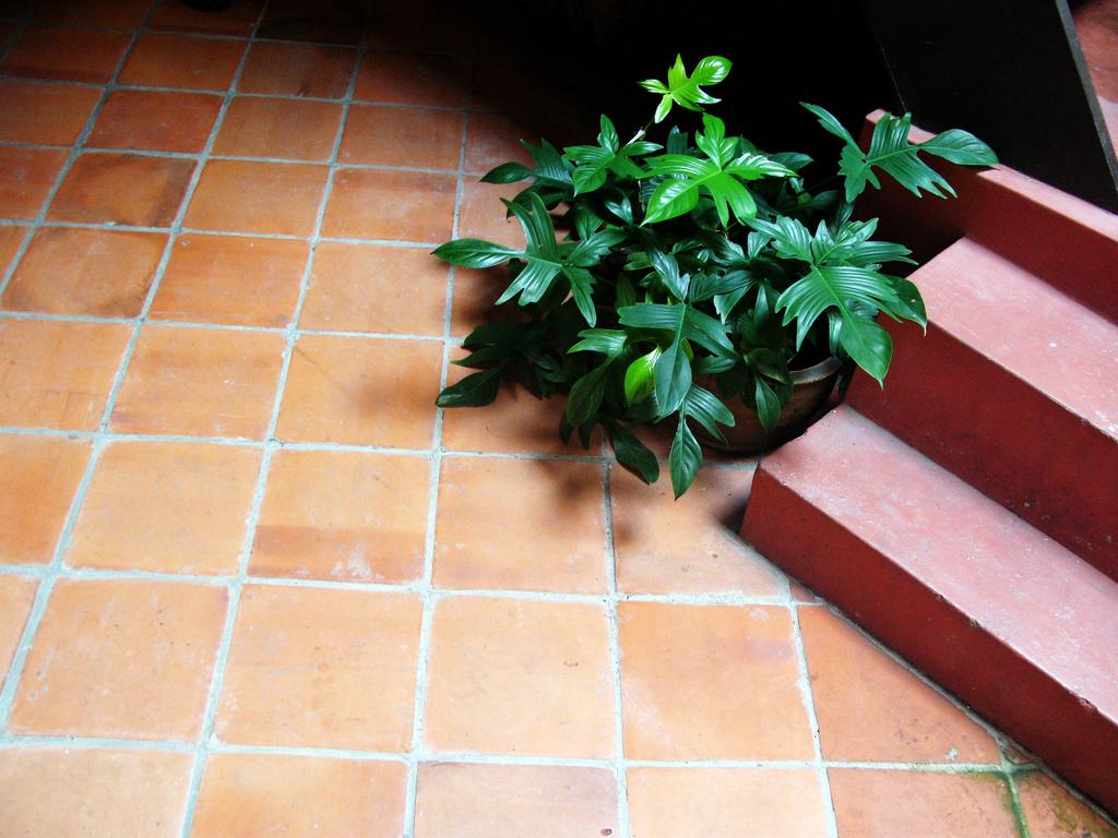 10 Hand Made Bricks Tiles in Pakistan Exterior Floor Tiles Designs in Pakistan Images.