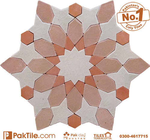 Pak Clay Buy Shop Online Mosaic Tiles Pattern in Karachi Images (6)