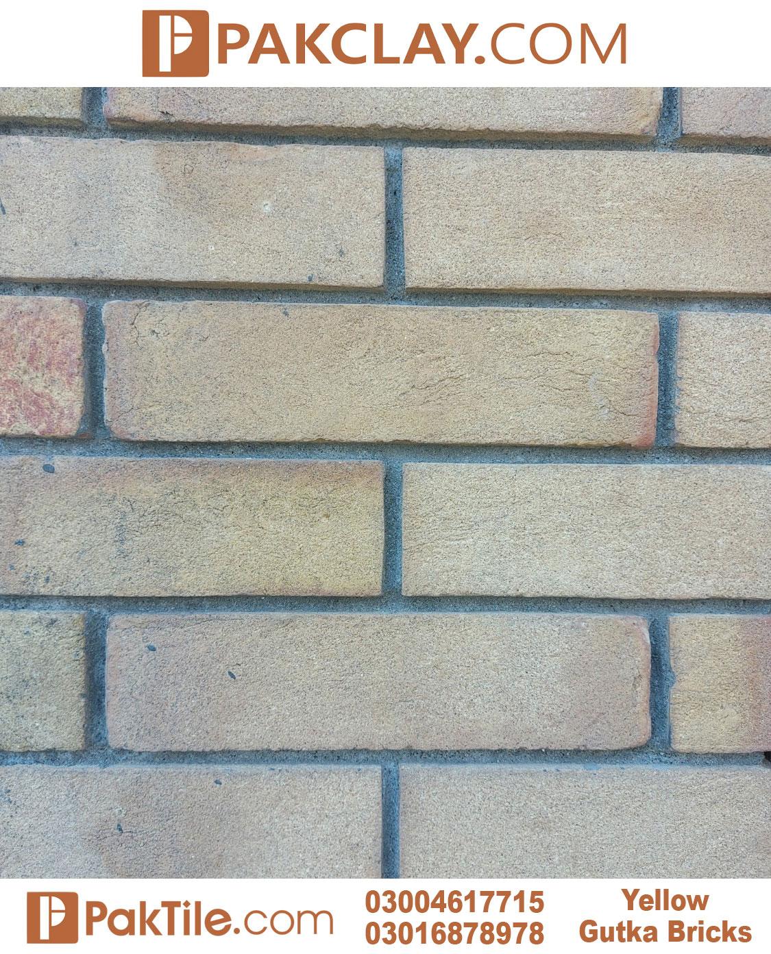 Yellow Gutka Brick Price in Pakistan