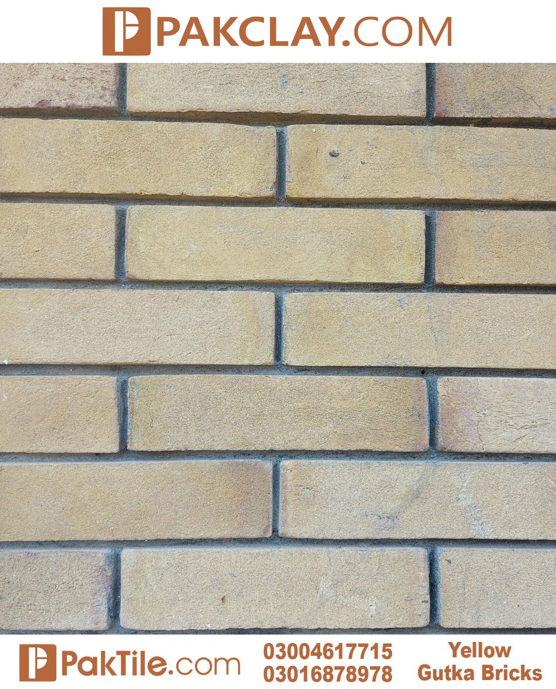 Yellow Gutka Tile Designs