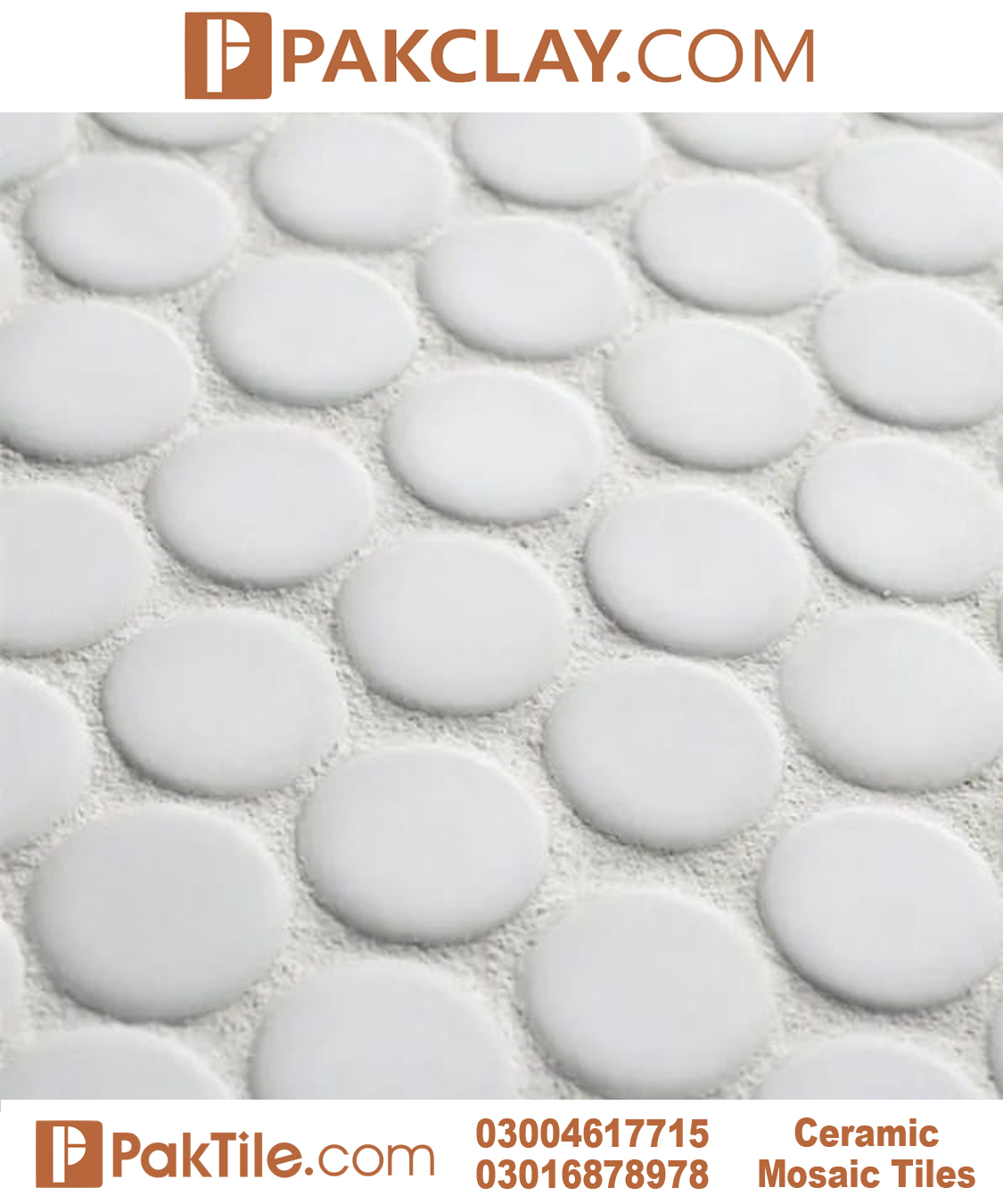 Penny Round Mosaic Floor Tiles Design Color Pure White